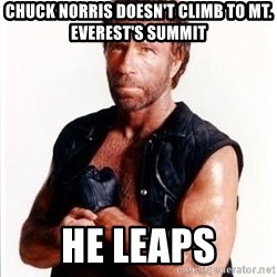 Chuck Norris  - chuck norris doesn't climb to mt. everest's summit he leaps
