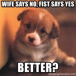 cute puppy - wife says no, fist says yes better?