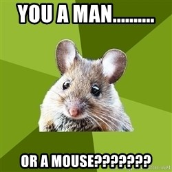 Prospective Museum Professional Mouse - You a man.......... or a mouse???????