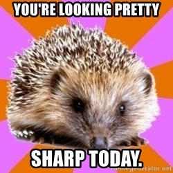 Homeschooled Hedgehog - you're looking pretty sharp today.