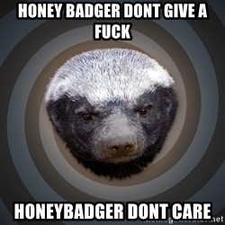 Fearless Honeybadger - honey badger dont give a fuck honeybadger dont care
