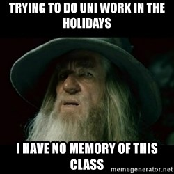 no memory gandalf - Trying to do uni work in the holidays I have no memory of this class