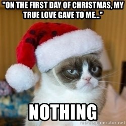 """Grumpy Cat Santa Hat - """"on the first day of christmas, my true love gave to me..."""" nothing"""
