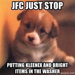 cute puppy - JFC JUST STOP PUTTING KLEENEX AND BRIGHT ITEMS IN THE WASHER