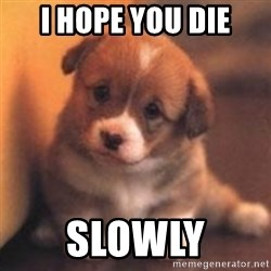 cute puppy - I hope you die Slowly
