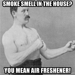 overly manlyman - Smoke Smell in the house? You mean air freshener!