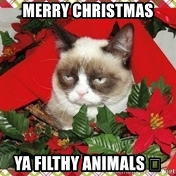 Grumpy Christmas Cat - Merry christmas Ya filthy animals 🎅