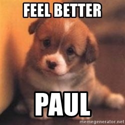 cute puppy - Feel better Paul