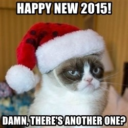 Grumpy Cat Santa Hat - HAPPY NEW 2015! DAMN, there's another one?