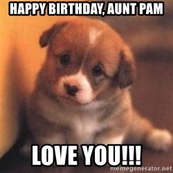 cute puppy - Happy Birthday, Aunt Pam Love you!!!
