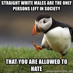 Unpopular Opinion Puffin - straight white males are the only persons left in society that you are allowed to hate