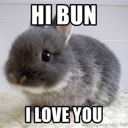 ADHD Bunny - hi bun I love you