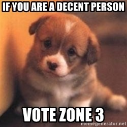 cute puppy - IF YOU ARE A DECENT PERSON VOTE ZONE 3