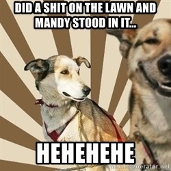 Stoner dogs concerned friend - Did a shit on the lawn and Mandy stood in it... Hehehehe