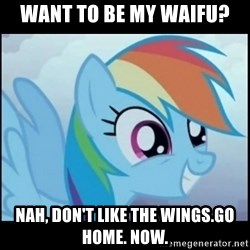 Post Ponies - Want to be my waifu? Nah, don't like the wings.go home. Now.