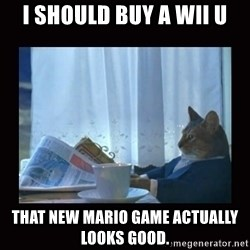 i should buy a boat cat - I should buy a wii u That new mario game actually looks good.