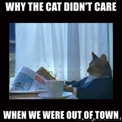 i should buy a boat cat - why the cat didn't care when we were out of town