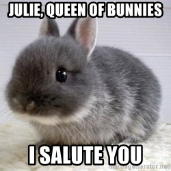 ADHD Bunny - Julie, queen of bunnies I salute you