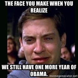 crying peter parker - the face you make when you realize we still have one more year of obama.