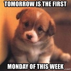 cute puppy - Tomorrow is the first  Monday of this week