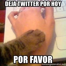 It's time to stop cat - DEJA TWITTER POR HOY POR FAVOR