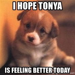 cute puppy - i hope tonya is feeling better today