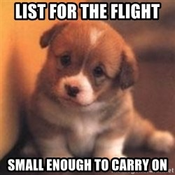 cute puppy - List for the flight small enough to carry on