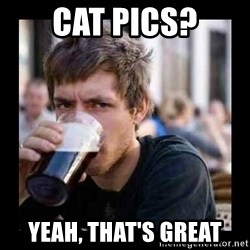 Bad student - Cat pics? Yeah, that's great