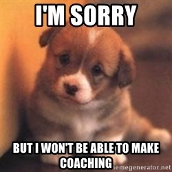 cute puppy - I'm sorry but I won't be able to make coaching