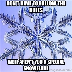 Special Snowflake meme - Don't have to follow the rules Well aren't you a special snowflake