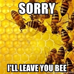 Honeybees - sorry I'll leave you bee