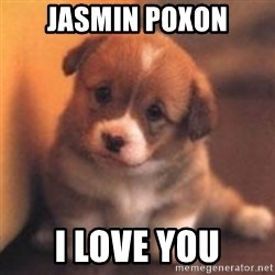 cute puppy - jasmin poxon I love you