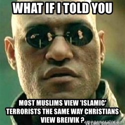 Matrix+Morpheus - What if I told you Most Muslims view 'islamic' terrorists the same way Christians view Breivik ?