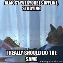 Sophisticated Cat Meme - almost everyone is offline, studying i really should do the same