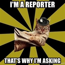 Frustrated Journalist Cat - I'm a reporter That's why I'm asking