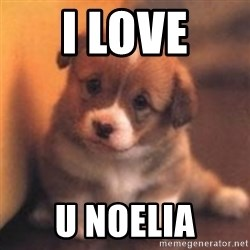 cute puppy - I LOVE U NOELIA