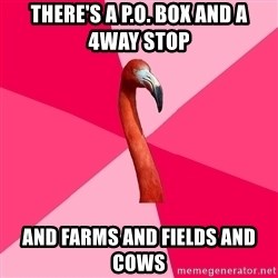 Fanfic Flamingo - there's a p.o. box and a 4way stop  and farms and fields and cows