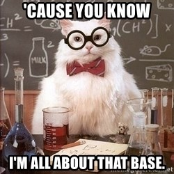 Chemistry Cat - 'Cause you know I'm all about that base.