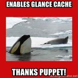 Thanks Obama! - ENABLES GLANCE CACHE THANKS PUPPET!