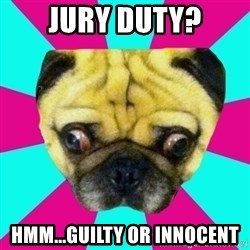 Perplexed Pug - Jury duty? Hmm...guilty or innocent