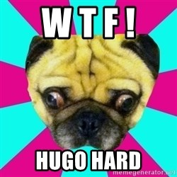 Perplexed Pug - w t f ! hugo hard