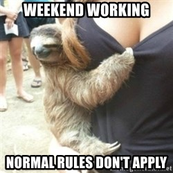 Perverted Sloth - weekend working normal rules don't apply