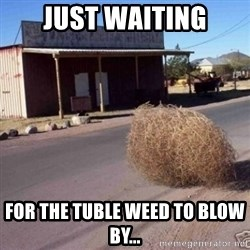 Tumbleweed - Just waiting for the tuble weed to blow by...