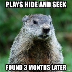 grumpy groundhog - Plays hide and seek  found 3 months later