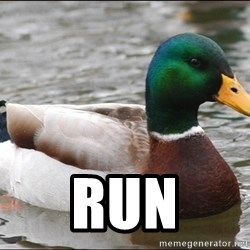 Actual Advice Mallard 1 -  run