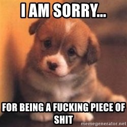 cute puppy - I am sorry... for being a fucking piece of shit