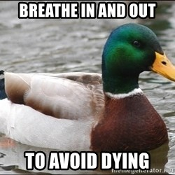Actual Advice Mallard 1 - breathe in and out to avoid dying