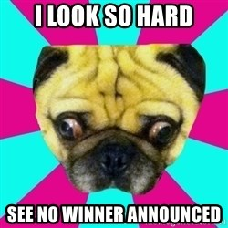 Perplexed Pug - I look so hard See no winner announced