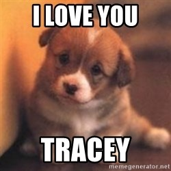 cute puppy - I love you  TRACEY