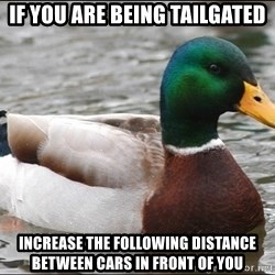 Actual Advice Mallard 1 - If you are being tailgated Increase the following distance between cars in front of you